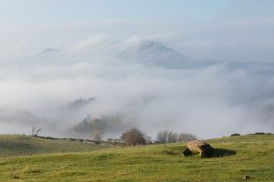 The Eildons in the mist